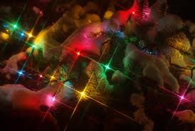 Holiday_lights_picture